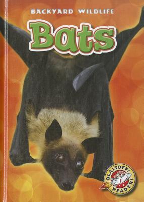 Bats By Schuetz, Kari